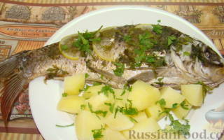 Какая рыба подходит для варки