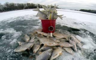 Где ловить рыбу в красноярском крае