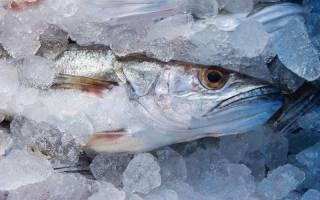 Как долго варить рыбу хек