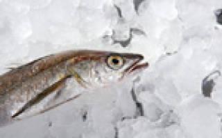 Рыба хек: фото