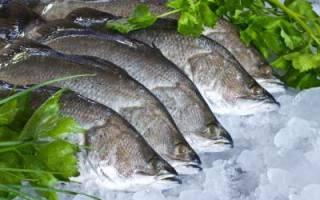Рыба сибас фото как готовить