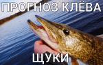 Прогноз клёва Щуки в городе Омск ( Россия )