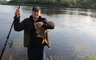 Секреты ловли рыбы на реке с течением